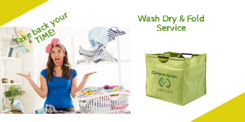 Champion Cleaners Wash Dry & Fold